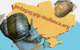 Логотип - З молюсками по Україні